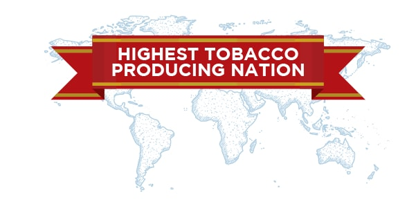 highest-tobacco-producing-countries-in-the-world